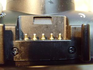 SNV31351.JPG
